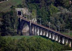 Puentes y Tuneles (magda196) Tags: bridge trees rio river puente arboles piers tunnel roads tunel magda vias pilastras magda196