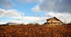 Hreiðrið (dfridgeirsson) Tags: autumn fall landscape nikon haust sumarbústaður d90 bústaður landslag sumarhús hreiðrið nikkor3518