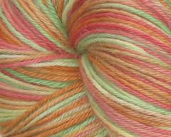 Tomato Garden BFL/Suri Alpaca Sport Yarn - 4oz (WW)