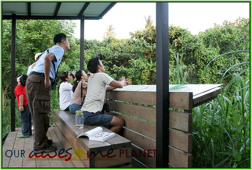 Bird Watching @ Nuvali-77