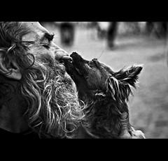 Non   siamo mai  soli... (Ivan del Bene) Tags: life street portrait people blackandwhite dog man roma photography marcel ef50mmf14usm canoneos450d ritrattidiof elisabettaronchi adobephotoshopcs4 littledoglaughednoiret