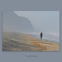 Torrey Pines Beach #034 (alexander.garin) Tags: california seascape nature nikon sandiego bestcapturesaoi elitegalleryaoi