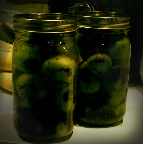 Fermented Green Tomatoes - The FudgeCan