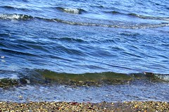 On the edge (Christie Spad) Tags: newyork river waves eastriver