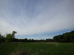 Event Horizon (Mike Tauer) Tags: trees minnesota clouds plymouth mn timbershorespark
