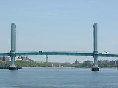 Manhattan NYC East River Bridge with gull