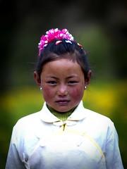 Tibetan girl, Yunnan, China (Eric Lafforgue) Tags: china portrait woman girl female asia femme chinese tibet shangrila hasselblad tibetan asie  fille kina chin cina chine xina zhongdian   peoplesrepublicofchina  zhongguo tiongkok  chiny  kna in h3d lafforgue  ericlafforgue   trungquc na   kitajska tsina  wwwericlafforguecom