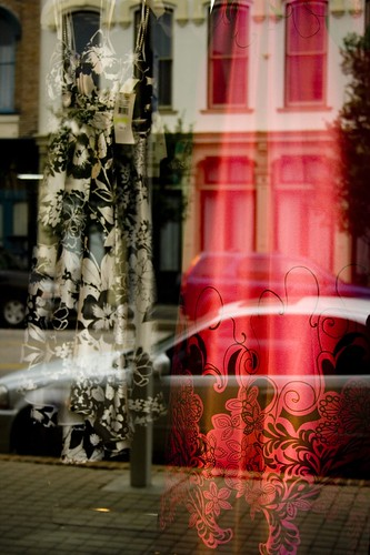 Fuschia Reflections