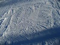 snow2007_1021