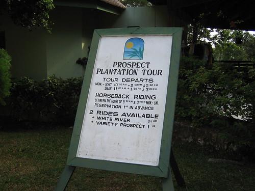 Prospect Plantation
