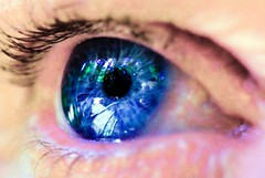 Blue Eyes (Michael Dawes) Tags: old blue iris eye eyes gene blueeyes mutation dawes oldblueeyes  topshots   flickrdiamond darrylparson michaeldawes mytopshots   blueeyesphotos blueirisgenemutation