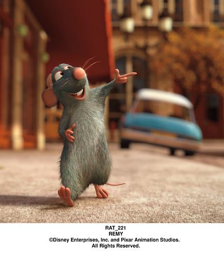 RAT_221