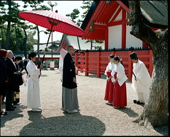 the red umbrella (troutfactory) Tags: wedding film japan umbrella mediumformat costume clothing friend shrine traditional ceremony rangefinder parasol  osaka analogue procession 6x7 shinto kansai  redumbrella kodak160nc sumiyoshitaisha  redparasol  fujifilmgf670 voigtlanderbessaiii