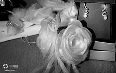 1248d-39 (Roberta Cadore) Tags: de casamento em cuiaba noivos vestidodenoiva babademoça igrejasantarita fotoscasamento casamentofotos fotografiadecasamento cuiab fotografosdecasamento robertacadore melhoresfotosdecasamentos álbumcasamento marinacadore fotoabele zetecadore fotografocuiaba ciasinfônica fotógrafocasamentocuiabá casamentofotografo casamentoemcuiabá albumcasamentocuiaba casamentocuiaba fotografoscasamentocuiaba fotoscasamentocuiaba mahalocozinhacriativa urbanomakeuphair babademocasamentocasamento cuiabacasamento ciasinfcuiabafoto abelefotografia cuiabafotografos cuiabafotos fotosciasinffot lucianaevinicios momentosdocasal çlbumcasamento çlbunsdefotosdecasamento babademoa casamentoemcuiab‡ ciasinf™nica fotoscasamentocuiab‡ fotosciasinf™nica fot—grafocasamentocuiab‡ fotoscasamentocuiabá fotosciasinfônica álbunsdefotosdecasamento