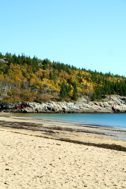 Sand Beach Autumn