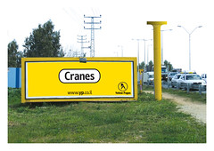 Y&R Billboard - Cranes