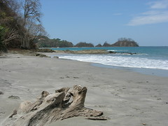 (The Desire) Tags: ocean wood travel sea costa beach costarica rica fa tenger tengerpart cen flickrdiamond