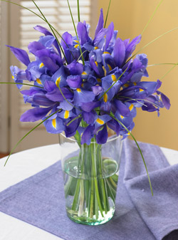 Organic blue iris bouquet