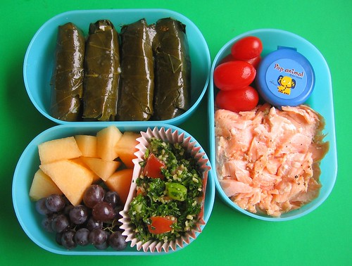 Salmon Mediterranean lunch for preschooler
