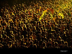 yellow crowd