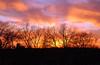 Sunset in January (Adam FLiK) Tags: trees sunset sky sun colors set clouds naturesfinest flikproductionscom flikproductions adamflikkema