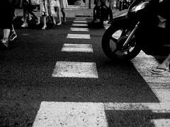 camina el paso de cebra  (Barceloneta, Barcelona)