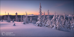 Winter Tranquility (Zack Schnepf) Tags: winter mountain snow oregon sunrise landscape frozen purple mthood hood jefferson zack tranquil mounthood naturesfinest abigfave impressedbeauty superaplus aplusphoto zackschnepf alemdagqualityonlyclub
