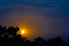 the Glow (z) Tags: blue pakistan sunset orange sun nature yellow clouds interestingness lahore watcher afterglow explored anawesomeshot aplusphoto