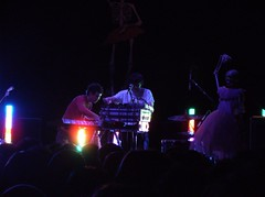Avey Tare and Panda Bear