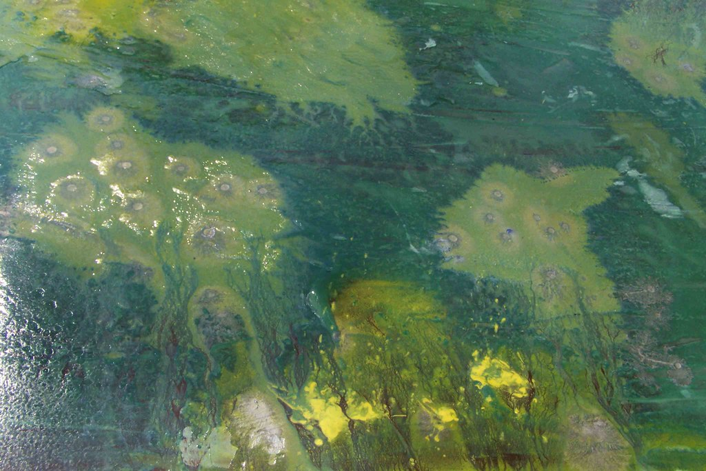 "Detail of ""The Calm"""