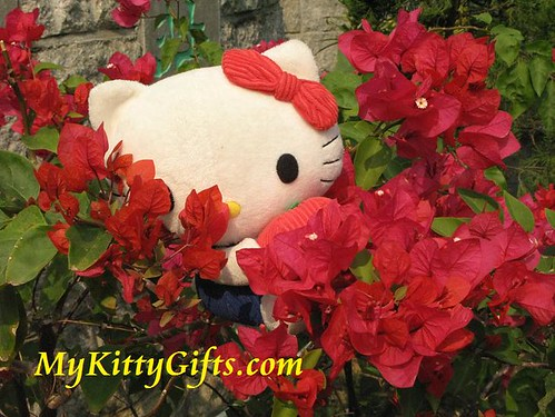Hello Kitty Climbing Red Azalea in Hong Kong Orchid Trip