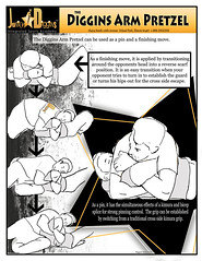 Jiujitsu techniques (judomichaell) Tags: park bar illinois arm jujitsu lock dojo tap technique moves bicep techniques kimura waza juji splice grappling mma tapout diggins armbar newaza gatame oralnd