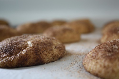 My fail Snickerdoodles.