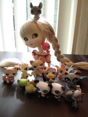 Noa Shay loves animals by Sakuya Masaki.
