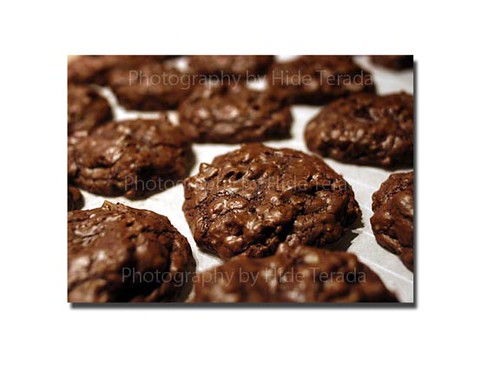 Double Chocholate Cookies