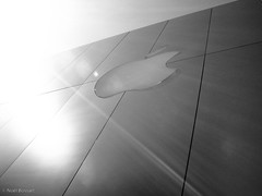 San Francisco - Shining Apple (noelboss) Tags: sanfrancisco travel bw usa white black building apple buildings blackwhite store reisen san francisco holidays haus location traveling ferien gebäude reise häuse noelboss
