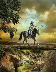 Little Black Pony: Dorset (Isabelle Ann) Tags: horse art digital rural caballo cheval jumping photographer digitalart pony fantasy isabelle jumper hunter cavallo cavalo pferd blackhorse equine equus paard horseshows hunterjumper instantfave manchestervt dorsetvt equineart vermontsummerfestival isabelleann isabelleanngreen impressedbeauty equestrianart hunterjumpers dorsetsummerfestival equinephotographer hunterjumpershows artistichorse passionateinspirations isabellegreen equitationart hunterjumperart dorsethorseshow hunterjumperphotography hunterjumprphotographer isabellegreenphotography isabelleannphotography isabelleannhorses mostbeautifulhorses equineartist hunterjumperphotographer hunterjumperphotograhy