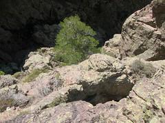 Dans la falaise sous l'amphithéâtre de Campu Razzinu: au-dessus du pas exposé