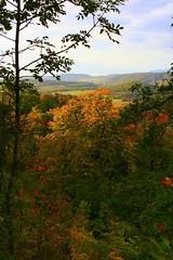 Autumn (zsoolt) Tags: hungary budapest breathtaking magyarorszg abigfave anawesomeshot superbmasterpiece goldenphotographer theperfectphotographer