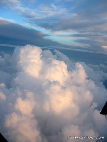 din avion
