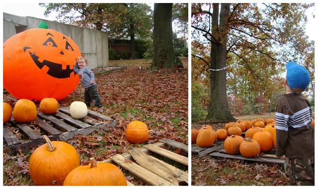 Pumpkin collage 2009_4