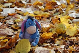 Autumnsong