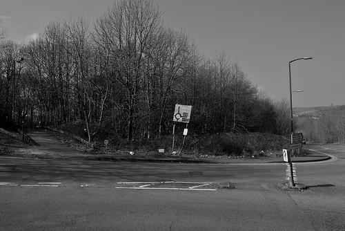 Longwood Drive