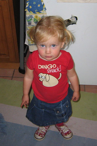 dingo snack princess