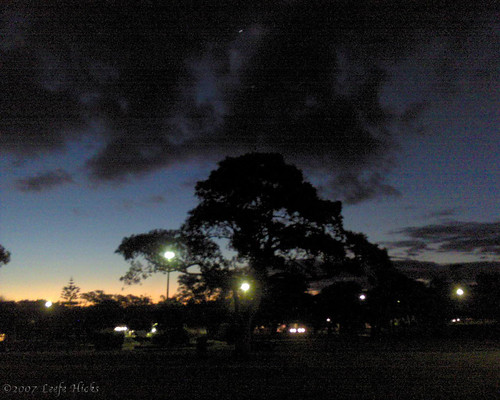 Night settles on Enmore Park