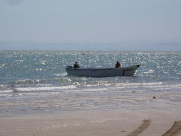 golfo de santa clara 12