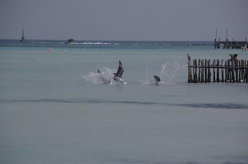 isla_mujeres_playa_norte_1