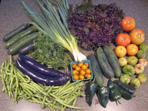 2007 CSA Week 9 - Veggies