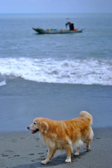 Pixnet-2010.09.27台東 三和海灘