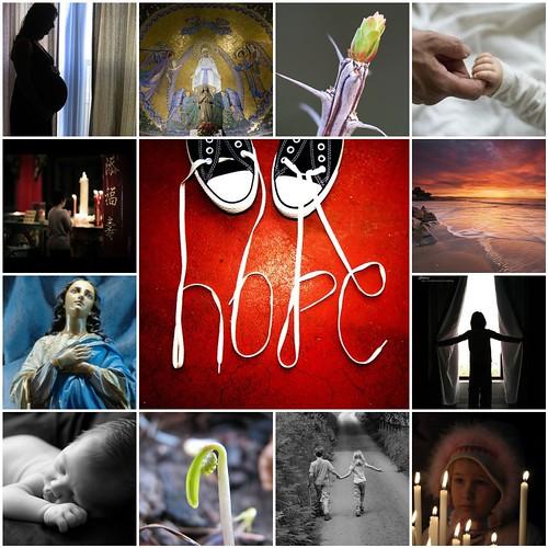 Hope- Muschelsucher's mosaic